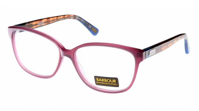 Barbour International Glasses BI-016