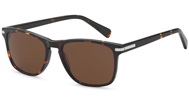 Carducci Sunglasses CD1061