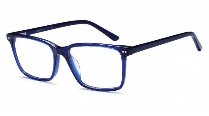 Brooklyn Eyewear D154